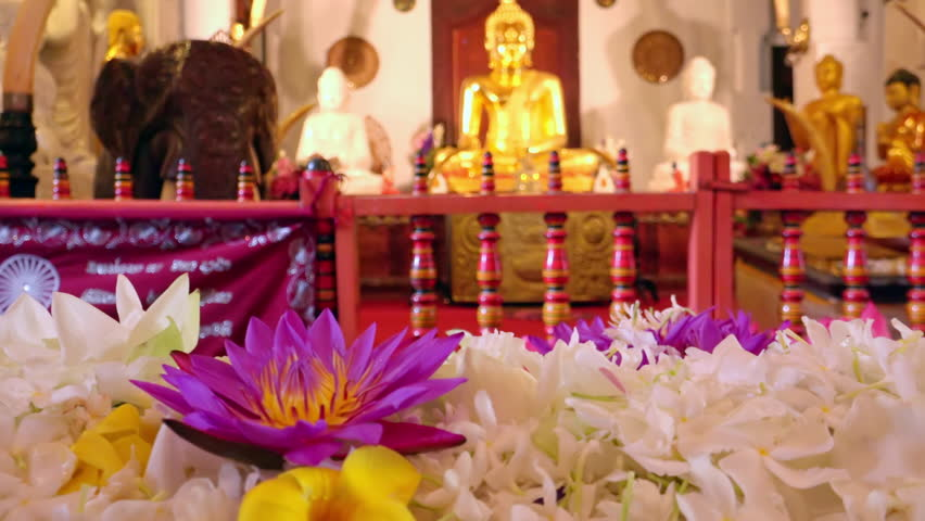 Pink lotus flowers offering to meditating Buddhas statues. Temple of Tooth Relic (Sri Dalada Maligava) in Kandy. Most sacred religious place in Sri Lanka