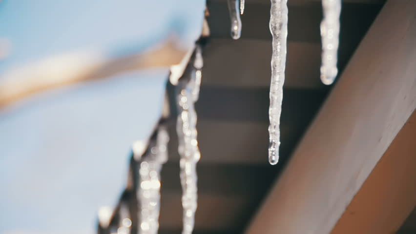 Winter Icicles Melting on the Roof Under the Spring Sun and Dripping from their Tips. Slow Motion in 96 fps. Winter icicles melting with water dripping from their tips. The winter sun light is shining