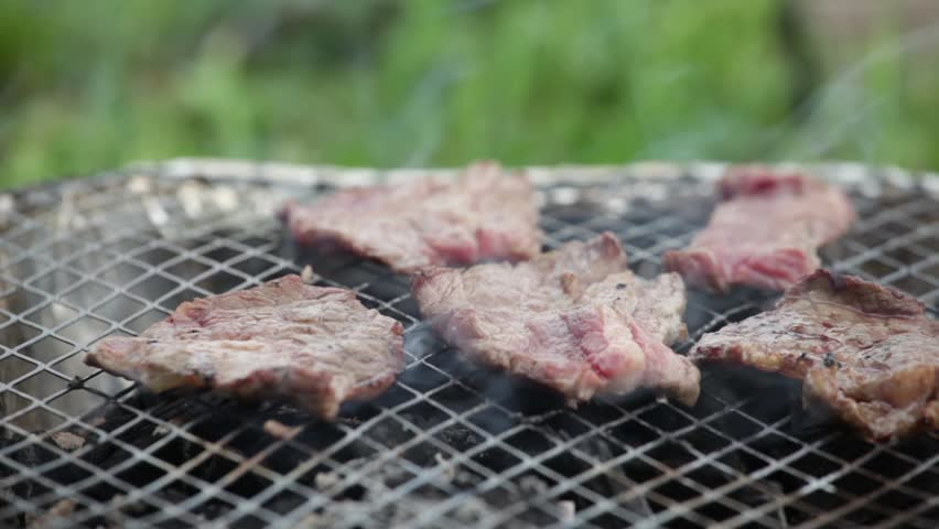 Barbecuing meat | Shutterstock HD Video #2501525
