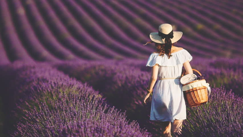 Woman Walking with picnic busket in an Endless Lavender Field. SLOW MOTION 120 FPS. Unrecognizable girl in a hat enjoying blooming lavender field. Plateau du Valensole, Provence, France, Europe. | Shutterstock HD Video #25455155