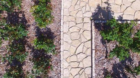 Aerial footage - Fountain in the vast gardens of Baron Edmond James de Rothschild at Ramat hanadiv