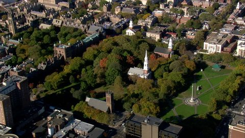 New Haven Green United States, New Haven County-2008