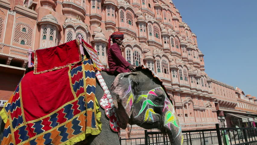 JAIPUR, INDIA - CIRCA MAY 2011: Ceremonial decorated Elephant outside the Hawa Mahal, Palace of the Winds