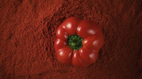 Large wet red paprika pepper drops down on the pepper powder paprika on a black table, slow motion, top view