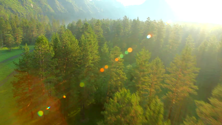 Aerial View. Flying over the beautiful forest trees. Aerial camera shot.  | Shutterstock HD Video #2612066