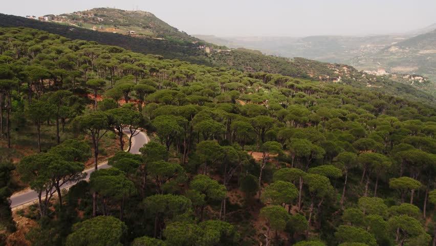 Aerial drone view of Pine land mountain in Jezzine, Lebanon.