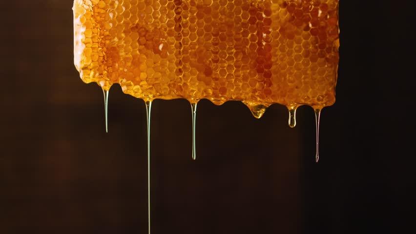Bee honeycomb wax with honey