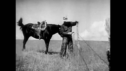 1940s: Cowboys use barbed wire to make fences in the Western USA in 1942.