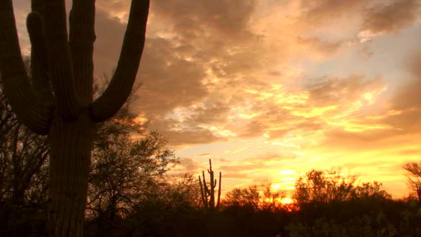 Time Lapse, Fiery clouds swirl across silhouetted saguaro cactus in Arizona desert landscape. 1920x1080