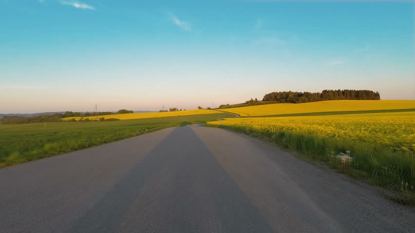 Car driving in evening spring rural countryside road on a sunny day. Landscape of meadow and rape field. Camera in front of the vehicle. Blue sky with sunlight, travel and transportation concepts.