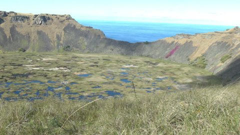 EASTER ISLAND VOLCANO WITH FLOWERS