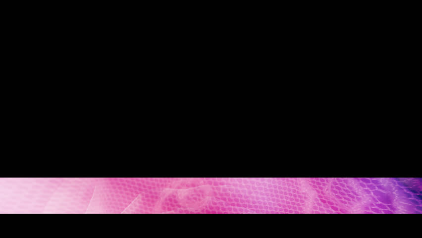 Pink rose lace lower third | Shutterstock HD Video #27030565