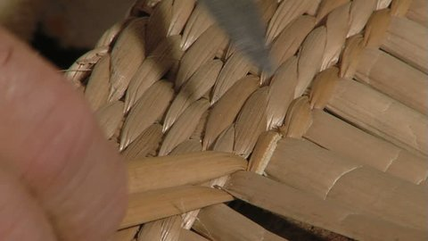 Cattail Basket. The art of Weaving with Cattail Leaves ...
