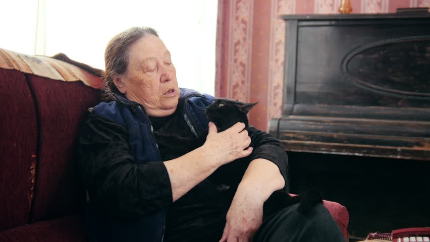 Portrait of old lady at home - senior woman sits on sofa with black cat - close up