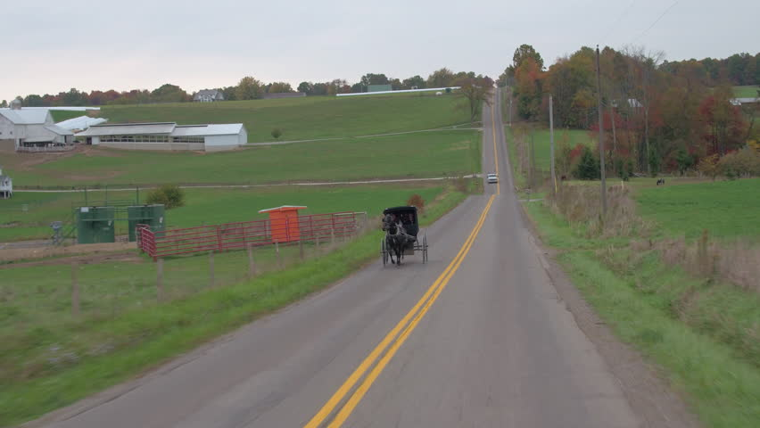 CLOSE UP: Traditional Amish family traveling in horse-drawn buggy through agricultural village past big dairy farm with large barn. Traditional Amish people breeding livestock for the milk production