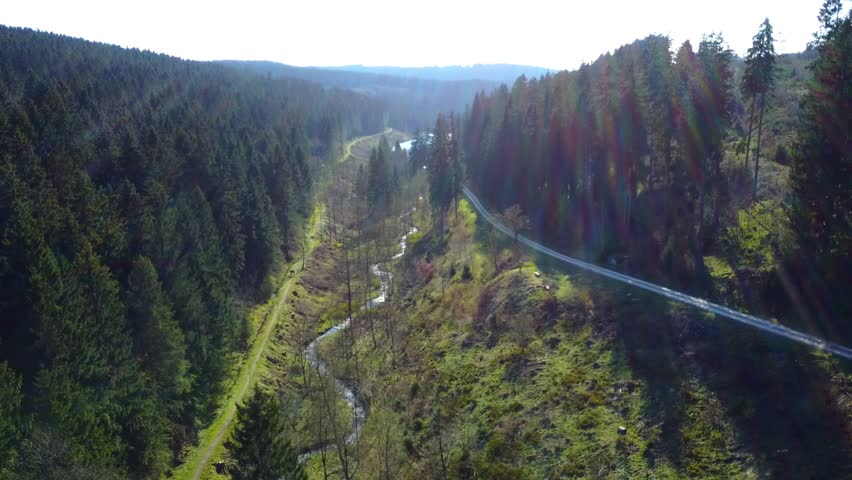 Aerial flight vertical down shot over beautiful sunny Harz mountain range forest pathway with creek in spring season ambiente 4k / Aerial flight over sunny Harz mountain forest pathway and creek 4k