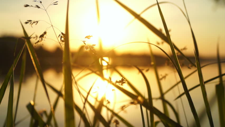 View of golden orb of the sun rising over lake | Shutterstock HD Video #27494335