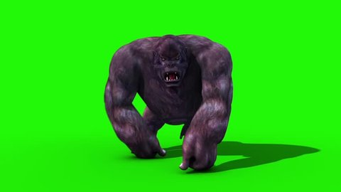 Gorilla Walkcycle Front Green Screen 3D Rendering Animation