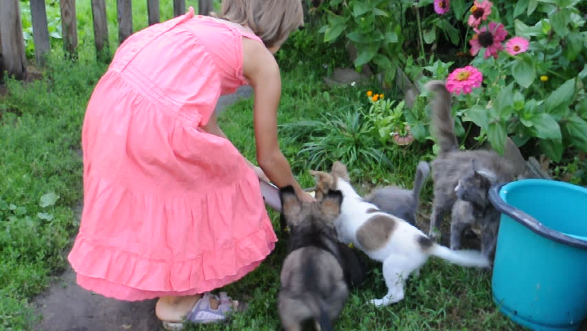 little girl feeding puppies and kittens