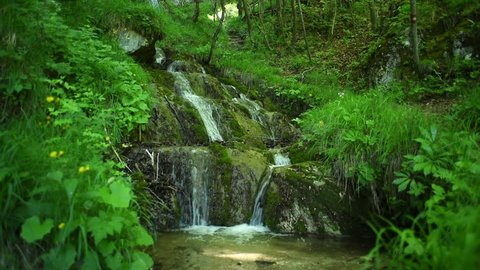 waterfall  in the forest in the spring with ambient sound