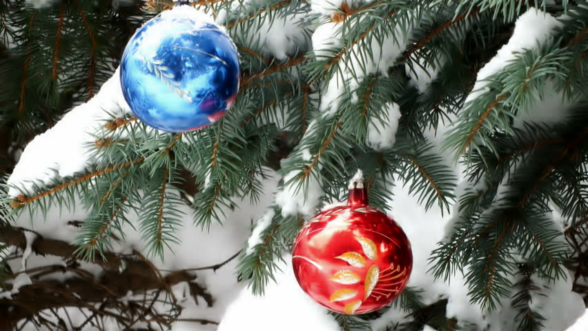 christmas tree in nature decorated with two beautiful colorful decorations hd stock footage - Snow Covered Christmas Trees