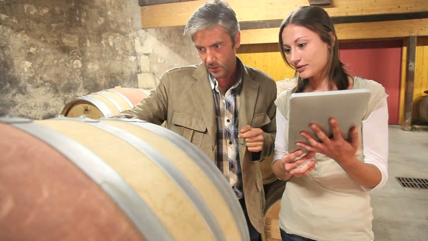 Couple of winemaker in cellar controlling wine quality