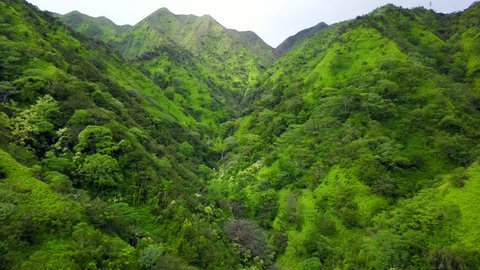 Aerial View of Tropical Valley Waterfall on Kaau Crater near Honolulu Oahu Hawaii.  Green and lush trees on a dormant volcano. flowing falls to a stream.  Sexy Green Tropical Island Waterfall. Palms.
