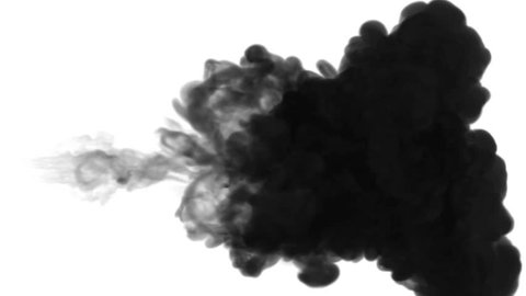 One ink flow, infusion black dye cloud or smoke, ink inject on white in slow motion. Black paint spray in water. Inky background or smoke backdrop, for ink effects use luma matte like alpha mask