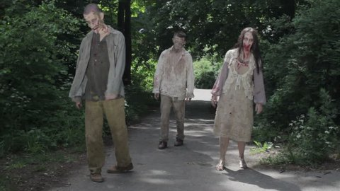 Zombies are walking through an abandoned village. HD