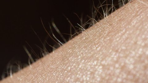 CLOSE UP MACRO DEPTH OF FIELD: Detail of skin and hair on female's arm. Light hair growing out of bright Caucasian skin