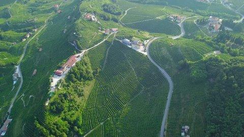 Drone view of Valdobbiadene hills - The Prosecco Country
