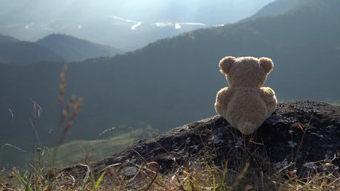 lonely bear doll.travel alone lifestyle concept.broken heart or lose in love concept.bear looking far away.