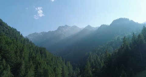 moving forward to  pine woods forest and mountain valley with sun flare in summer day.Europe Italy Alps outdoor green nature scape mountains wild aerial establisher.4k drone flight establishing shot