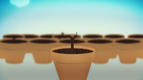 Cash plants growing, concept animation