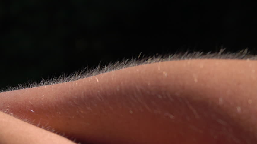 CLOSE UP MACRO DOF: Detail of skin and hair with goose bumps on female's forearm isolated against black background. Light hair on person's arm raised up. Bright Caucasian skin getting goosebump chills
