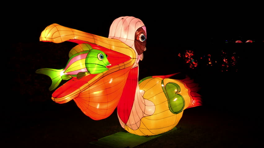 Chinese lanterns of two beautiful pelicans with a carp in their beak during the China Light Festival