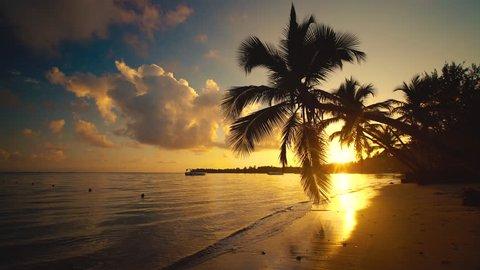Sea Sunrise Punta Cana, Dominican Republic. Palm trees on sandy beach.