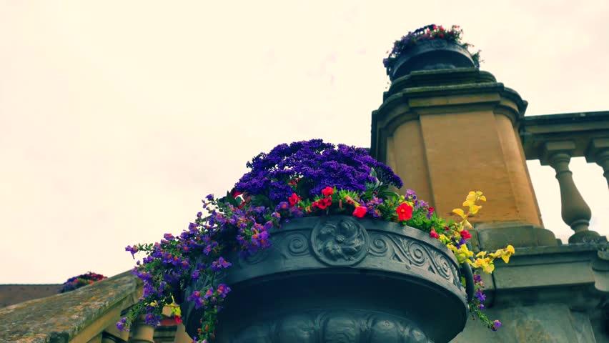 Header of flowerpot