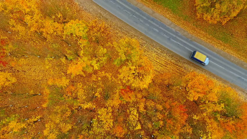 Sky view of autumn road car. Aerial view country road in autumn forest. Forest and highway road drone view. Car road in forest top view