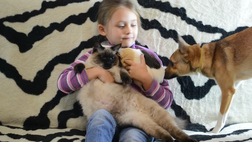 little cute girl with long hair playing with pets