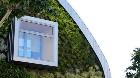 Window in modern building with vertical gardens. Green environment, nature concept