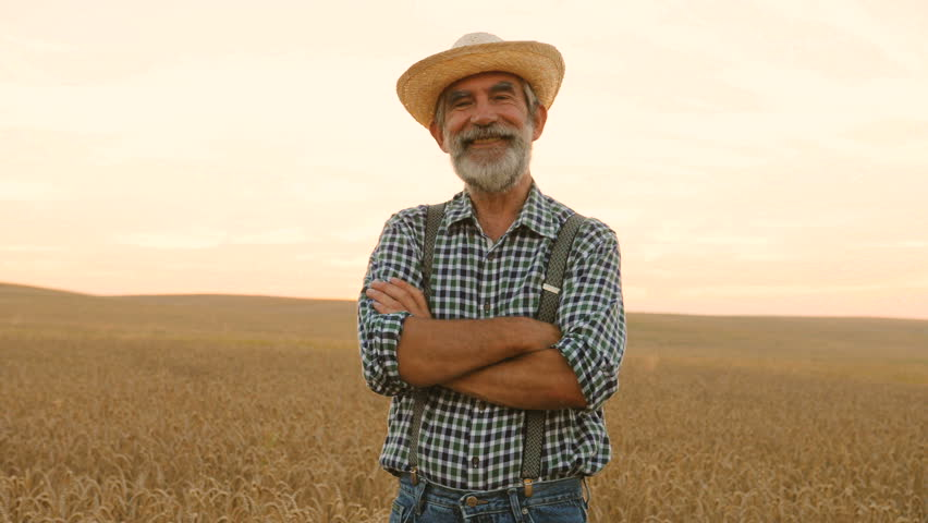Portrait of senior man with crossing hands in the hat and casual shirt in the golden field on the colorful sky background.