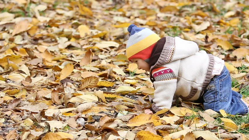 Happy baby crawling in the autumn colorful leaves