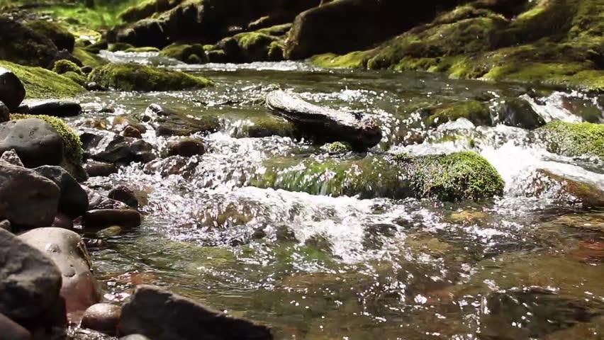 Header of downstream