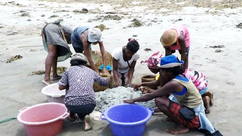 Agatu,benue, Nigeria - Circa April Stock Footage Video (100
