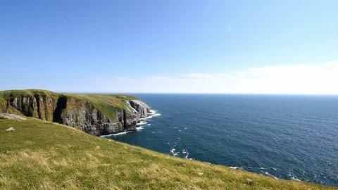 Bird Covered Cliffs of Cape St. Mary's Ecological Reserve
