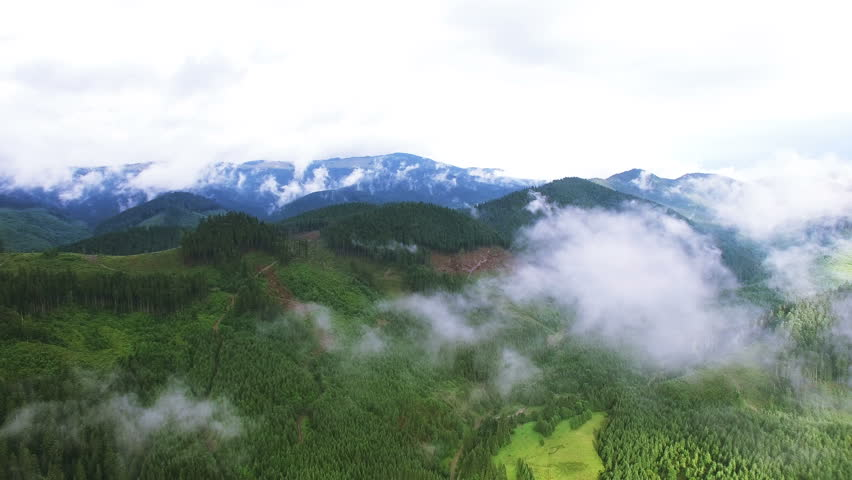 4K .Aerial. Fly in clouds in mountains with wood. Real shoot #30050965