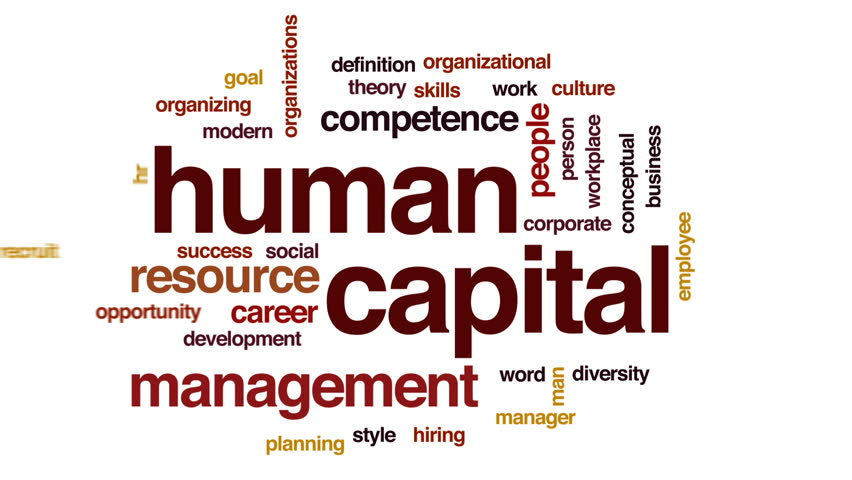 definition of human capital management