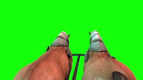 Carriage Horses Run Close up Green Screen 3D Rendering Animation
