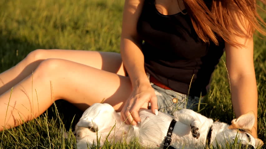 Wonderful girl is sitting on the lawn in the park and ironing her dog | Shutterstock HD Video #30833005